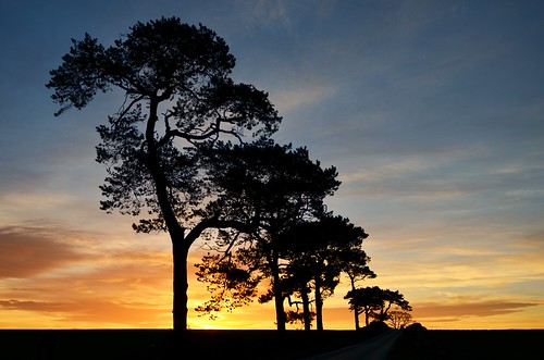 Scottish Borders Sunrise by Caledonia Alan