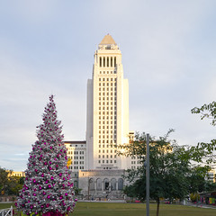 Grand Avenue Park Holiday Tree