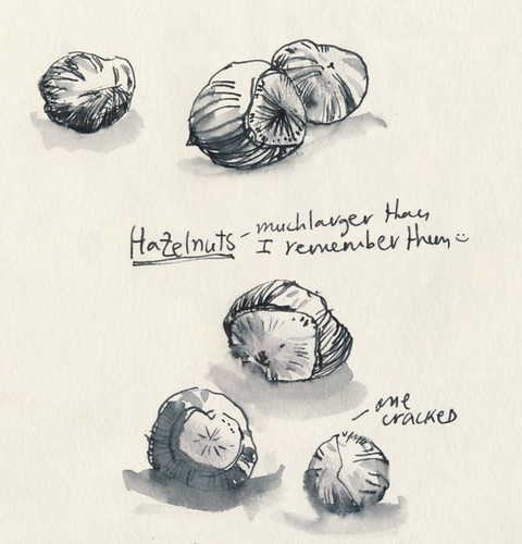 December 2013: Treasures - Hazelnuts