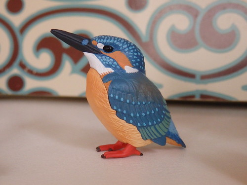 kitan kingfisher