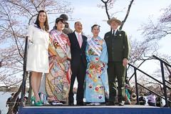 2014 Cherry Blossom Festival Lantern Lighting Ceremony  (437)100414