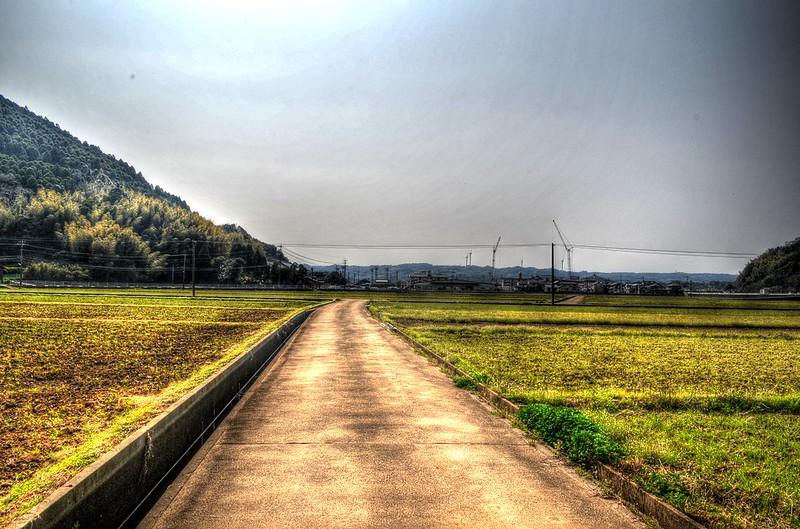 Fields by Genkai