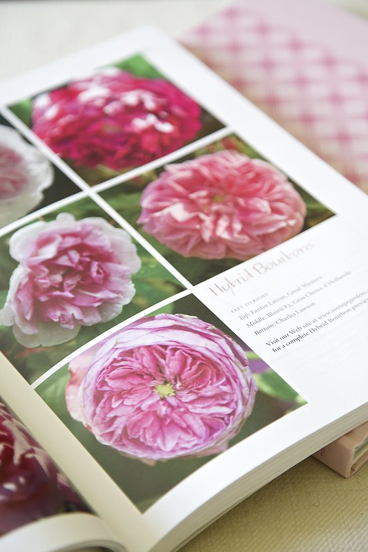 vintage Gardens: book of roses
