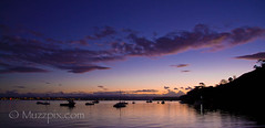 muzzpix-nz posted a photo:	Facebook    | 500px  | Website Dusk at Pilot Bay. Calm after the storms ...