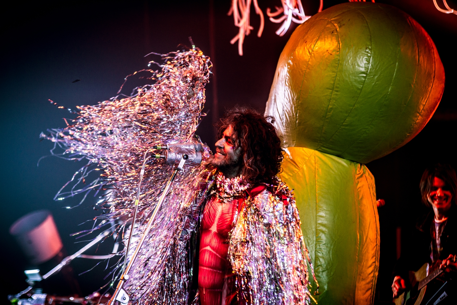 The Flaming Lips 48