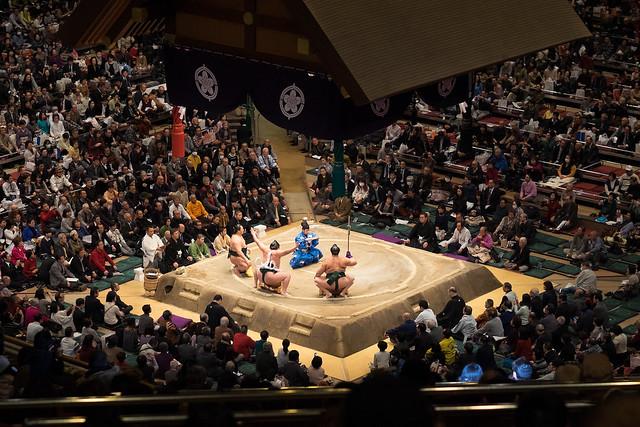 Sumo and Kujira adventures-3