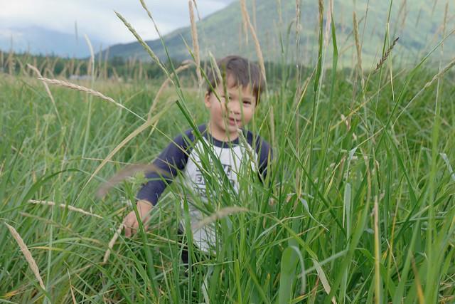 Blog Alaska Hope 1