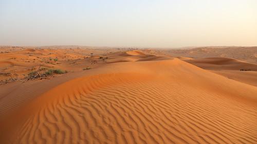 sun landscape sand dubai alone desert outdoor united dune uae emirates arab unitedarabemirates