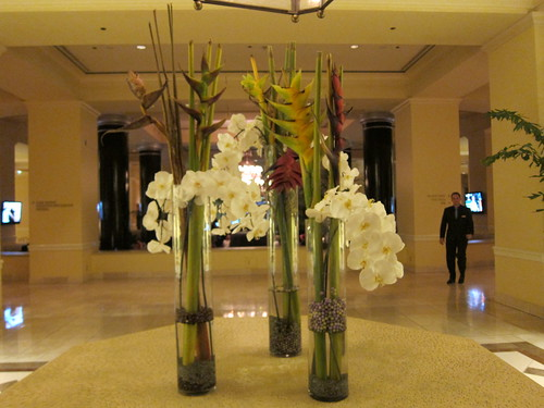 flowers, lobby, tropical, orchids IMG_4937