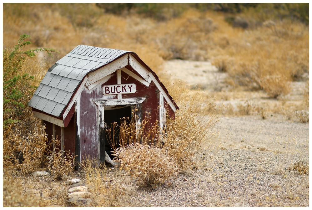 IMAGE: http://farm4.staticflickr.com/3691/9310498598_fcc6f66c9a_o.jpg