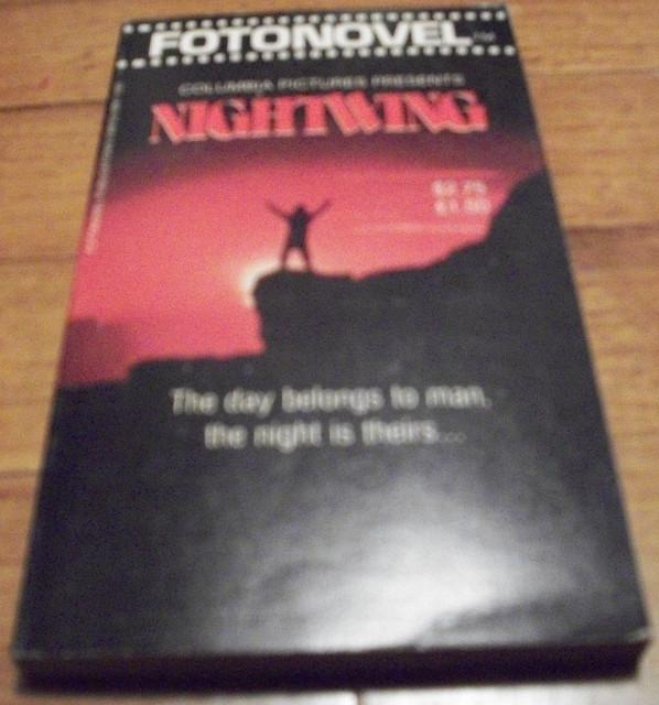 fotonovel_nightwing
