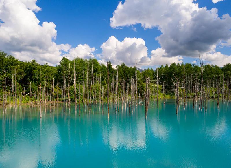 The Hidden Blue Pond