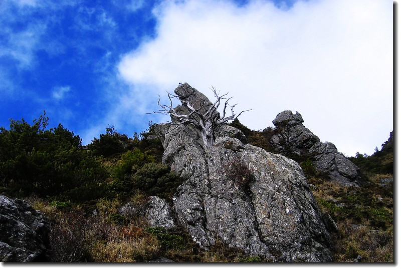 步道旁巨石 1