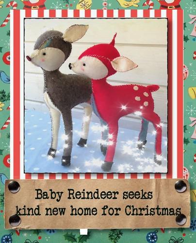 Baby Reindeer Giveaway