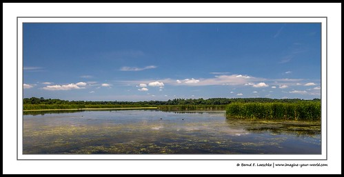wetlands environment water ecosystem usa southcarolina marsh floodplain fishing hunting wildlife recreation imagineyourworld clouds scenic sky landscape nature color photography countryside scenery travel vacation berndflaeschke canon60d panorama swamp fotografie