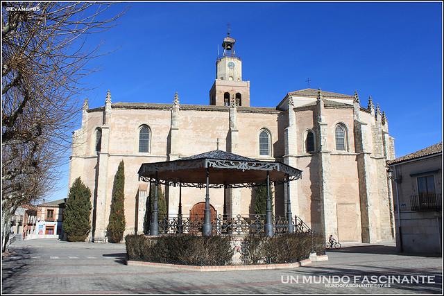 Catedral y centro de Coca