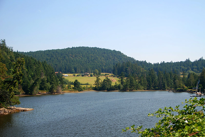 Farmland in Maple Bay, Vancouver Island, British Columbia, Canada
