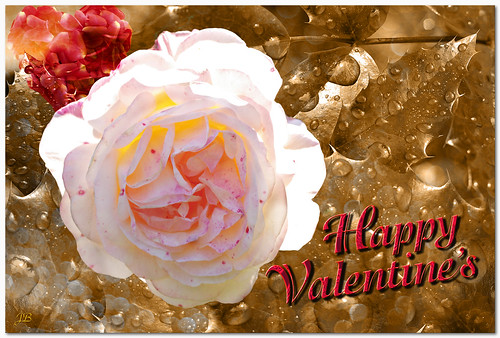 Happy Valentine's Day !_2014-02-14