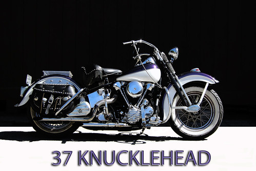 37 KNUCKLEHEAD DSCN1985 copy