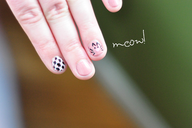 cat nails2.jpg