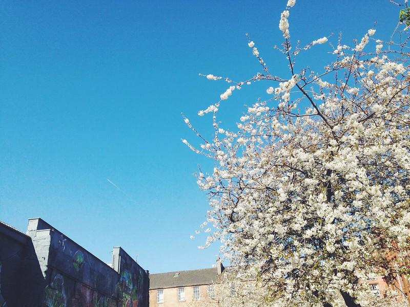 Sunny Glasgow