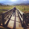 Bridge over the swamp at #yankeehat #namadgi #canberra #cbr #greatfriday