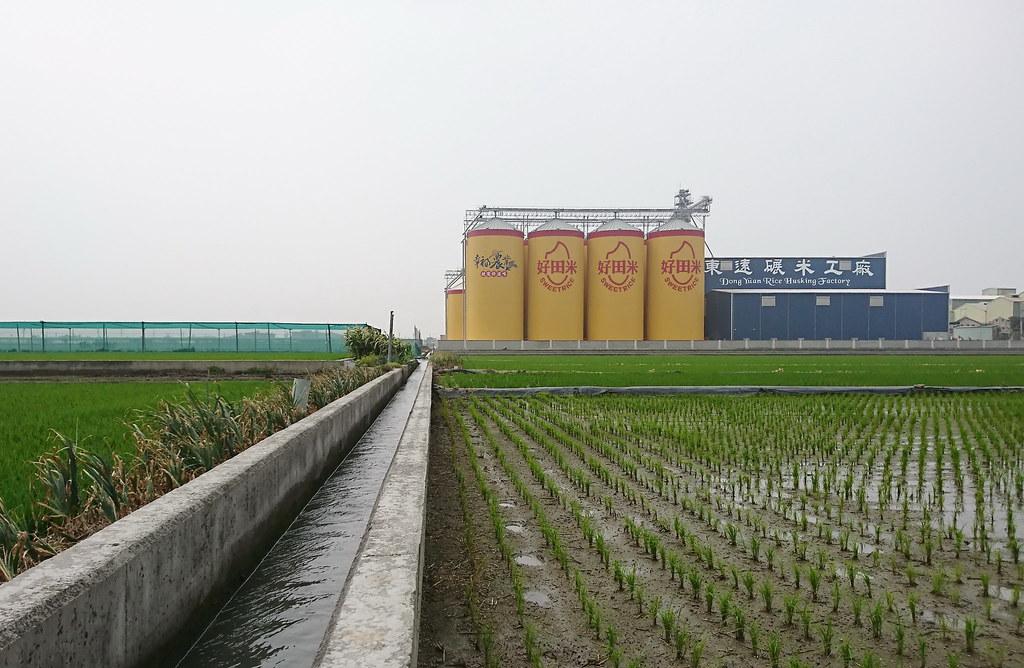 東遠碾米工廠 (1)