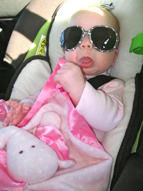 cutie pie in sunglasses
