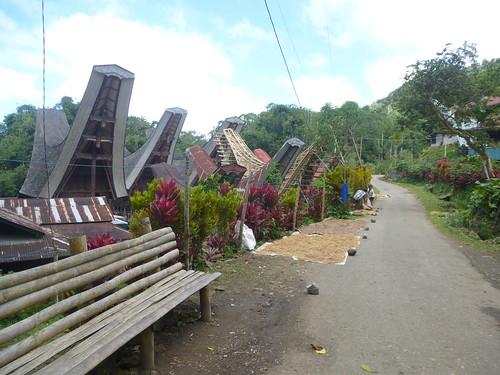 Sulawesi13-Lo'ko Mata-Ke'pa (20)
