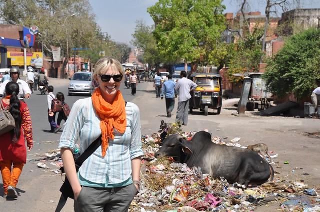 India_Trip_365
