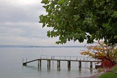 Regentag in Hagnau am Bodensee