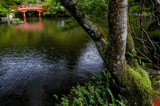 「池」 醍醐寺 - 京都