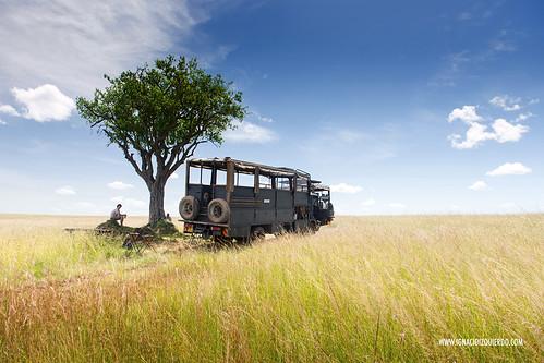 Kenia - Masai Mara 13