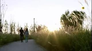 《主君的太陽》EP16