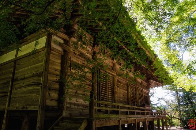 「陽の光」 石峯寺 - 兵庫