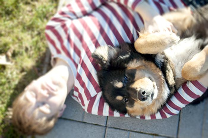koirakoirkoiooirkora