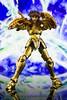 [Imagens] Saint Cloth Myth EX Dokho de Libra  10519383693_cbc246e7aa_t