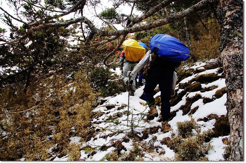 踏雪陡登可樂可樂安山 1