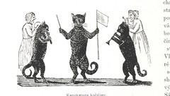 """British Library digitised image from page 240 of """"Na úsvitě nové doby. Dějiny roku 1848. v zemích českých [With illustrations, including portraits and facsimiles.]"""""""