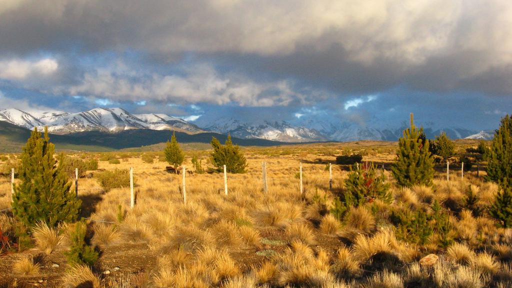2. La estepa, cerca de Bariloche. Autor, Andreinvs