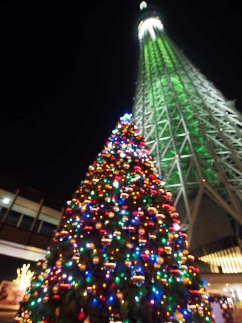 Christmas Lights On Homes