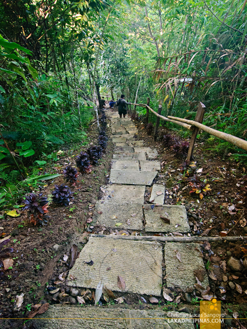 The Trail to Kalikasan Waterfalls in Camp Peralta, Capiz
