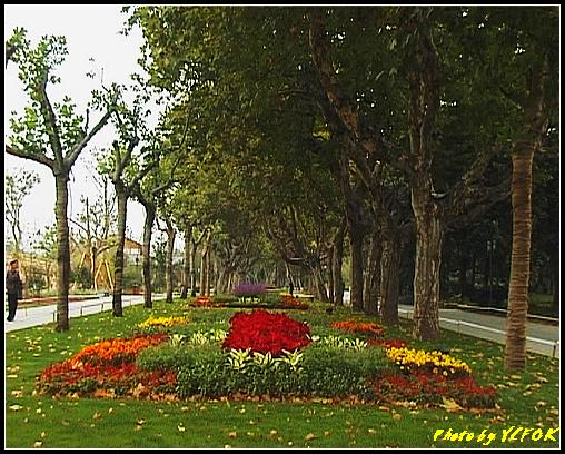 杭州 西湖 (其他景點) - 087 (湖濱路的湖畔花園)