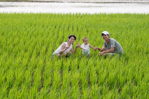 阿碩、小綠、阿禾與他們的稻田。黃世澤攝。