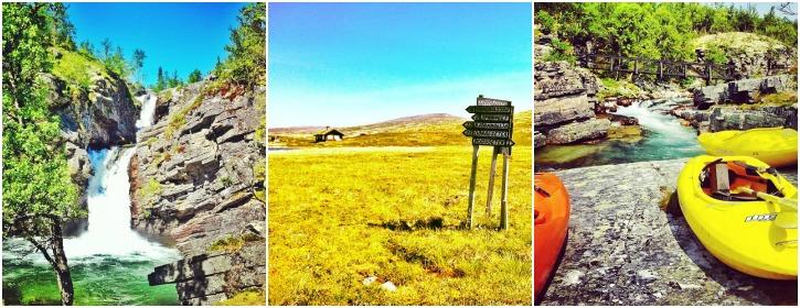 Rondane kansallispuisto