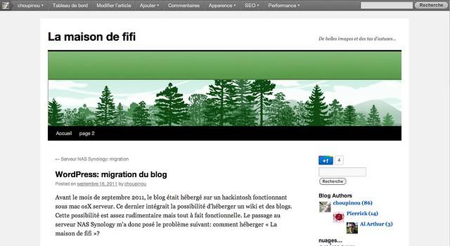 Interface-wordpress1