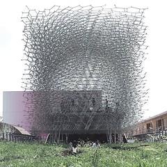 Beehive with fibonacci sequence - UK pavilion