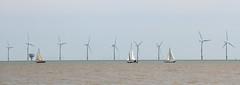 Sailing By Gunfleet Sands Offshore Wind Farm! [Explored!]