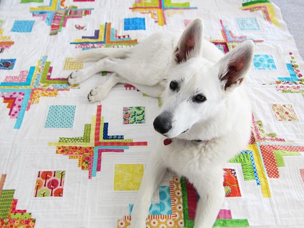 surprise quilt