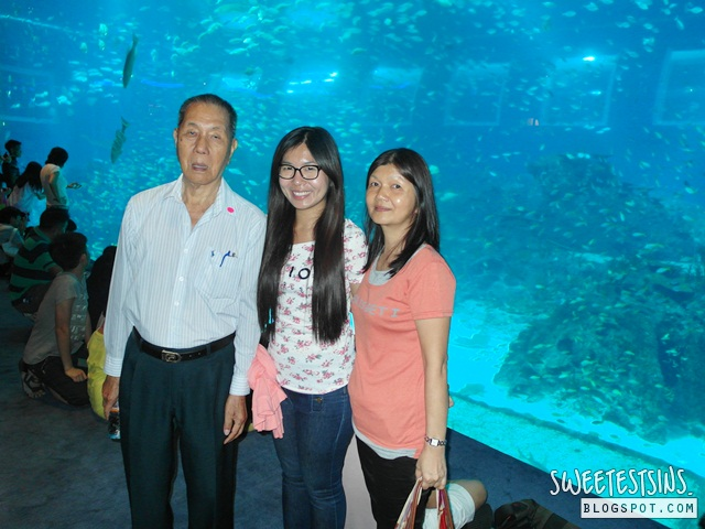 sea aquarium marine life park resort world sentosa singapore (66)